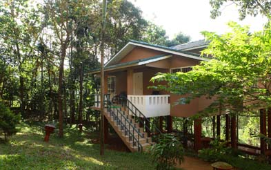 lakkidi Resort wayanad